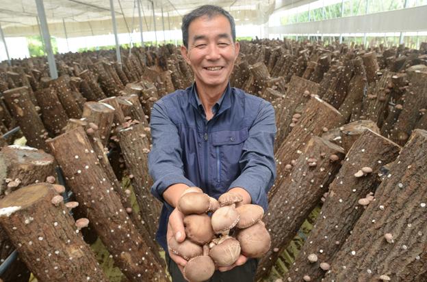 파주시산림조합, 파주농특산물축제 온라인 특판행사 생산자 지원
