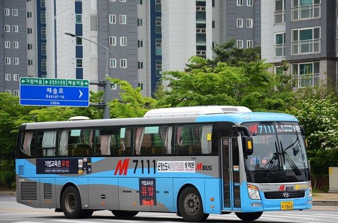 코로나19로 인한 운정지역 대중교통 감차 위기